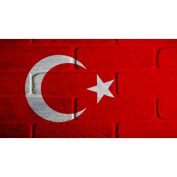 Fall of the Turkish Lira and the Property Market in Turkey