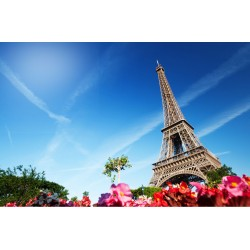 Who Buys Overseas Properties in France?